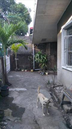 House Bed and Rooms for Rent in Valenzuela City